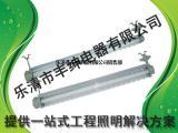 FHY-2*28W防水防尘防腐全塑三防荧光灯