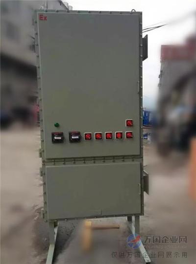 03  电气 03  电气成套设备 03  配电箱 03  防爆双电源开关