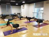 美俪阿萨娜企业瑜伽课