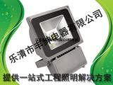 NTC9230丰绅高效投光灯陕西经销商-高效中功率投光灯