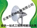NTC9210防震型超强投光灯/防爆灯