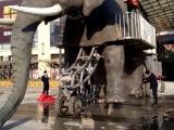 机械大象出租/巡游巨型暖场道具机械大象租赁