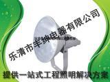 WF258A超强防震型投光灯WF258A