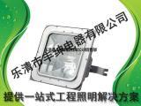 NFC9101-50W海洋王LED泛光灯NFC9101