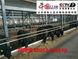 牛怎么驱虫长得快肉牛预混料