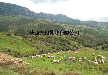 陕西羊奶粉代加工OEM贴牌会销就到陕西天和乳业集团