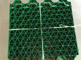 厂家批发植草格,蓄排水板,排水板,草坪格