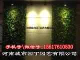 室内植物墙制作项目-河南城市园丁园艺有限公司