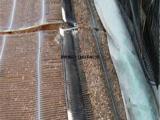 玻纤土工格栅价格   玻纤土工格栅供应
