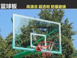 广西横县篮球架厂家