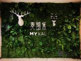 青岛仿真绿植墙、室内植物墙、假草坪、花墙 大小垂直绿化工程
