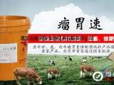 牛的催肥药 肉牛催肥剂如何使用