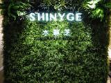青岛仿真绿植植物墙|仿真花墙|仿真树|绿雕|仿真景观设计