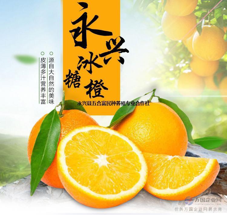 冰糖橙批发水果新鲜 -永兴冰糖橙购买