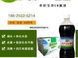 水产em菌液养对虾专用的水产益生菌肥水专用剂w82hjns0