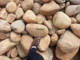 鹅卵石 草地鹅卵石厂家 园林石材石料价格