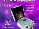 BY2671绝缘电阻测试仪使用方法
