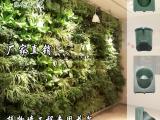 专业垂直绿化花盆新型墙上装饰植物墙花盆背景墙装饰厂家直销
