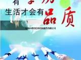 深圳学历教育,211/985学历轻松拿含金量高