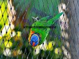 鸟园防逃网产品大全,鸟园防逃网报价持续更新