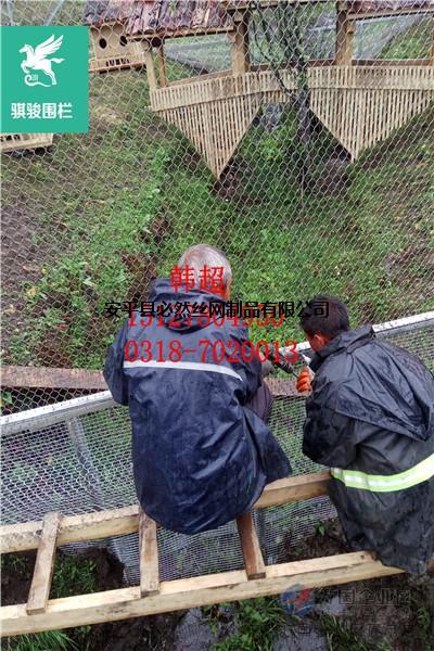 动物园笼舍网,动物园笼舍围网,动物园笼舍防护网价格