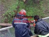 动物笼舍网,动物笼舍围网,动物笼舍防护网每日更新报价