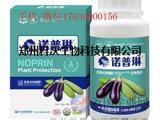 用好叶面肥!增产潜力大诺普琳茄子高产叶面肥
