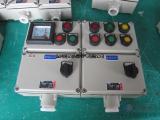 BXK-A2B1D2K1立式安装防爆控制箱
