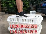 塑料鸡筐 运输鸡笼 鸡筐批发 元宝型鸡筐