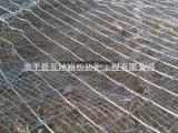柔性边坡网厂家 绿化护坡防护网厂家
