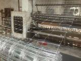 供应镀锌鹿网,养鹿铁丝网,鹿网围栏,价格便宜