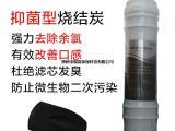 银嘉抑菌烧结滤芯2分韩式快接滤芯家用纯水机净水器 余氯去除