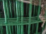 常年供应荷兰网,浸塑荷兰网,墨绿色养殖圈地围网