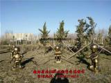 玻璃钢卡通消防员雕塑,消防员灭火情景雕塑小品