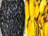 高碘值果壳活性炭     河南晶科