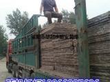 免烧砖托板生产厂家 免烧砖托板船板