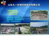 专业污水处理,生物技术污水处理、降总氮的好方法
