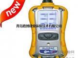 国内双12活动促销中美国华瑞气体检测仪 PGM-6208