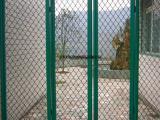 批发零售美格网护栏网,体育场美格网围栏,美格网防盗窗