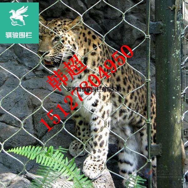 5分钟让您了解小型猫科动物笼舍网/动物园围网厂家
