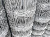 供应草原养殖网,养牛铁丝网,草原护栏网