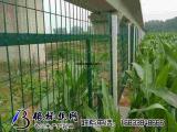 河北金属网片防护栅栏,安平县金属网片防护栅栏供应商