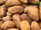 峰景园林出售黄腊石材料