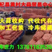 河南杞县黄村大蒜贸易中心的形象照片