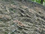 浸塑边坡防护网 钢丝防护网厂家 主动防护网施工队