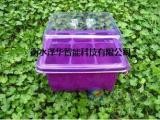 育苗盘三件套芽苗菜阳台菜园家庭园艺用育苗盘 塑料家居摆设