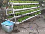 阳台露台种菜A字形双面水培机无土栽培设备