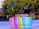 储水式花盆彩色半透明套盆懒人花盆