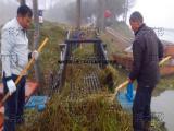 水草清洁机械割草机械 水面杂草收割设备 清漂保洁船