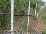 【pvc刺铁丝网围栏】pvc刺铁丝网围栏_刺铁丝网围栏
